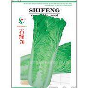 供应河北时丰农业科技开发有限公司时丰牌白菜种子时绿70A3白菜