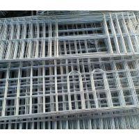 安平兴博4层16位肉鸽养殖笼,肉鸽养殖技术,鸽子笼