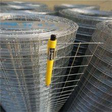 浙江热镀锌电焊网 坚固耐用 价格合理