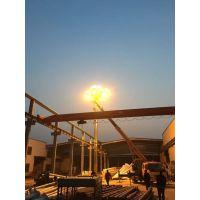 新款LED玉兰灯 江苏科尼6米8米10米欧式广场景观灯中华灯