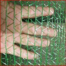 盖土网滨州 土地铺盖防尘网绿网 防尘网生产厂家