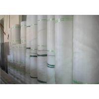果园防鸟网_40目尼龙防虫网 农用防虫网罩