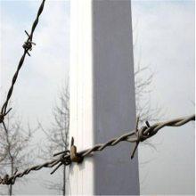 铁蒺藜防护网 镀锌刺绳 不锈钢刺绳厂家