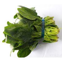 有机蔬菜扎把机 韭菜扎把机 大棚青菜捆绑机价格 鲁强机械生产