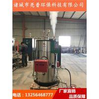 蒸汽锅炉益普立式室燃炉, 全自动蒸汽发生器低氮排量