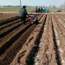 农用种生姜开沟机 挖大葱沟起垄机