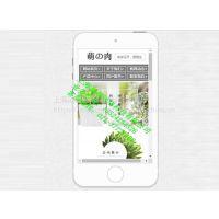 松江叶榭小程序开发公司,松江大港手机建站公司,松江茸北微信公众号申请公司
