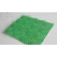 三维植被网绿化山坡 防止水土流失 柳州市三维网型号