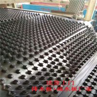 高性能低价格蓄/排水板HDPE材质
