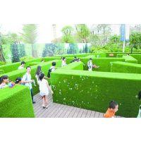 震撼大型绿植迷宫出租 创意绿植迷宫租赁价格 绿植迷宫活动公司