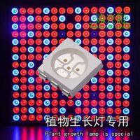 Smd5050蓝光贴片LED灯珠 5050蓝光报价 5050蓝光规格书 蓝光450-460