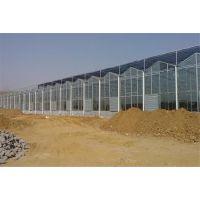 江苏淮安智能连栋玻璃温室阳光房2万平米、物联网全程监控型施工企业