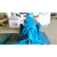 厂家直销 2GH48-60 双螺杆泵 安徽永骏泵阀 双螺杆泵厂家