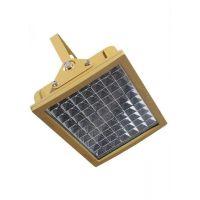 SW8140外场景观灯100W防爆LED泛光灯