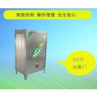 蒸馒头包子燃气蒸汽锅炉 新型燃气低压室燃炉蒸汽锅炉
