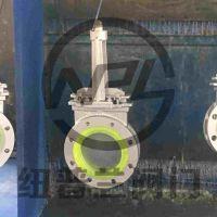 厂家直供 衬聚氨酯闸阀 Z43PU-10C
