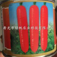供应高盛F1胡萝卜杂交种 早春胡萝卜种子 表皮光滑 收尾早 整齐度好 三红率高