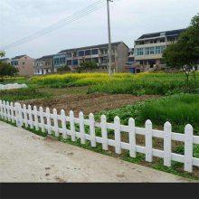 花园花池外围护栏 佳木斯草坪围栏 学校草坪塑钢围栏