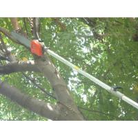 加长杆园林高枝锯 苗圃果园必备高枝锯