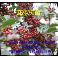 http://himg.china.cn/1/4_22_236322_600_550.jpg