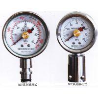 液压综采矿用双针耐震压力表BZY-50/BZY60/80