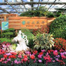 设计建造高智能温室大棚型花卉市场