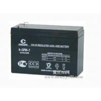 内蒙古销售光宇/光宇蓄电池6-GFM-50固定型铅酸蓄电池北京直销销售部报价