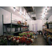 北京完整的食品冷链加工储藏运输冷库建造安装设计公司