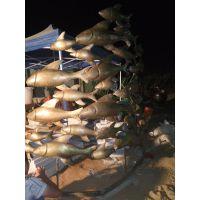 广东原著雕塑厂家 手工制造鱼群不锈钢 小区园林摆饰