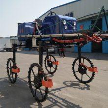 专业生产植保大型喷雾器宽喷幅柴油打药车自走式杀虫弥雾机