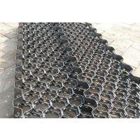 宁波亘博不锈钢大泥爪龟甲网适用于大型装置价格合理