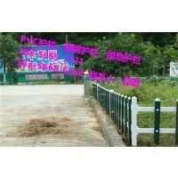 长丰绿化护栏现货、pvc塑钢护栏老厂家