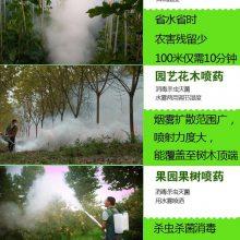 果树蔬菜 大棚烟雾机 背负式打药机 弥雾机图片