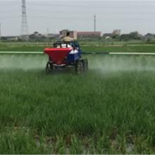 虫害治理大型四轮喷药车 玉米庄稼座驾式杀虫喷雾机 柴油自走式打药车