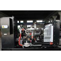 雷沃80kw千瓦天然气发电机组 工厂脱硫脱水燃气发电机组
