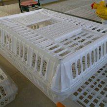 成鸡成鸭运输笼 塑胶运输筐厂家 加厚面朝磨鸡笼鸭笼鹅筐