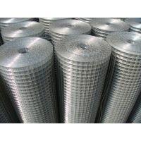 安平迪南直销镀锌电焊网、浸塑电焊网、电焊网片