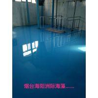 滨州邹平在西王淀粉厂做环氧地坪漆地面的公司