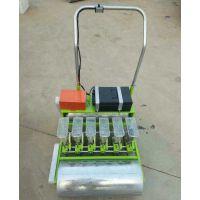 种植机 手推式蔬菜播种机 LQ-6行种子精播机厂家