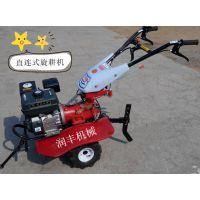 小型整地除草机 润丰型号齐全手推式旋耕机