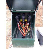 10KV户外高压电缆分支箱DFW-12带开关