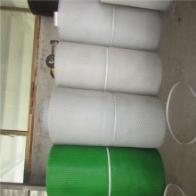 阻燃塑料平网 0.8-2厘米白色胶网 宠物脚垫网