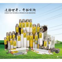 高压熔断器大全,高压限流熔断器专业生产厂家