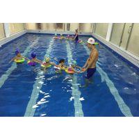 室内恒温游泳池 室内游泳池造价室内游泳池