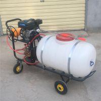 富兴四冲程果园喷雾器 高压远射程打药机厂家 远射程喷雾器价格