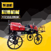 新型喷药机 柴油喷雾器 消毒机价格 济宁科博机械