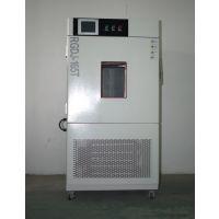 上海茸隽RGDJ-100非标高低温试验箱销售