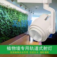 LED室内植物绿墙补光灯/绿植墙生长专用轨道式补光射灯30瓦高显指XIHV