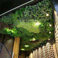 2018绿植墙品牌公司 集成墙饰 连锁品牌 浩晟仿真植物墙 PE材质