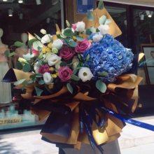横县鲜花批发花艺花材横县花卉15296564995横县鲜切花基地种植 销售